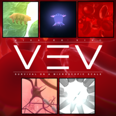 VEV : Viva Ex Vivo Basic Bundle