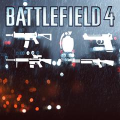 Pacchetto subito Armi per Battlefield 4™