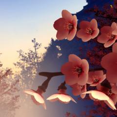 VEV Hanami (Cherry Blossom) // Bonus Stage Dynamic Theme