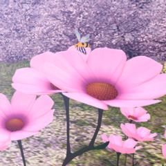 VEV Hanami Bloom Meadow // Bonus Stage Dynamic Theme