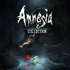 Amnesia : Collection