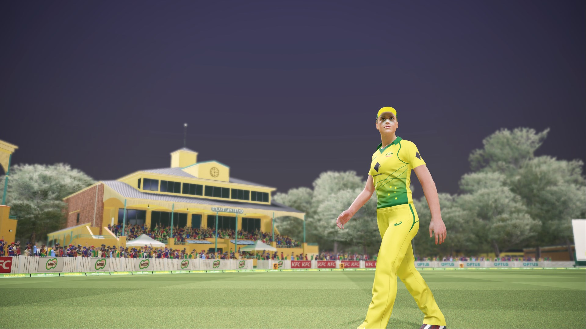 ASHES CRICKET скриншот 1
