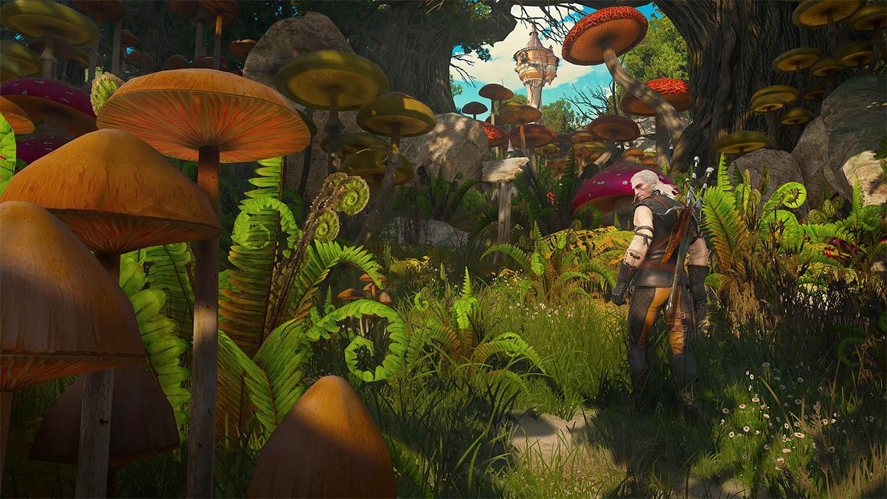 Скриншот №3 к Ведьмак 3 Дикая Охота - Кровь и вино