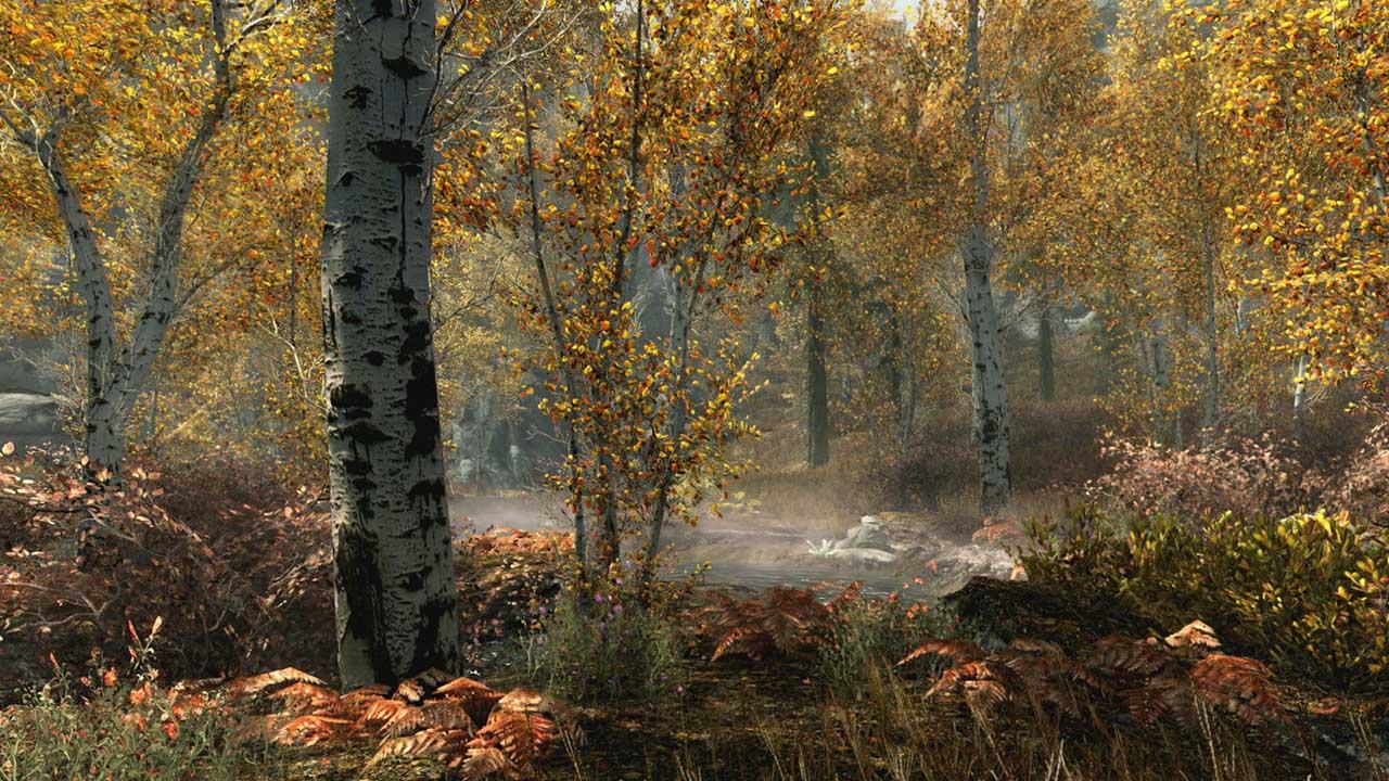 Скриншот №5 к The Elder Scrolls V Skyrim Special Edition