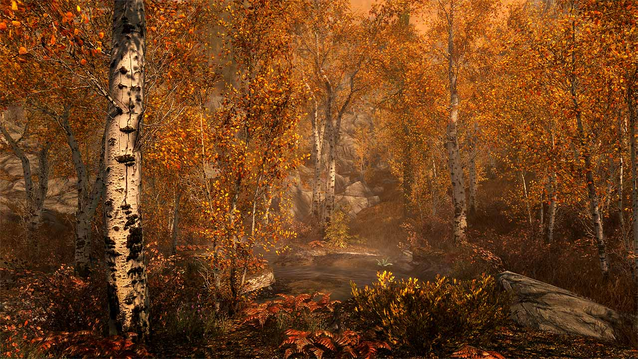 Скриншот №9 к The Elder Scrolls V Skyrim Special Edition