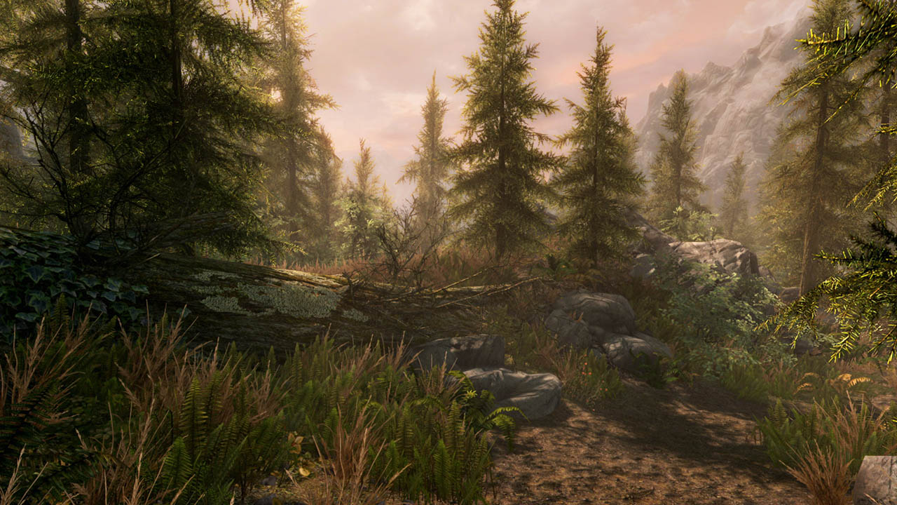Скриншот №7 к The Elder Scrolls V Skyrim Special Edition