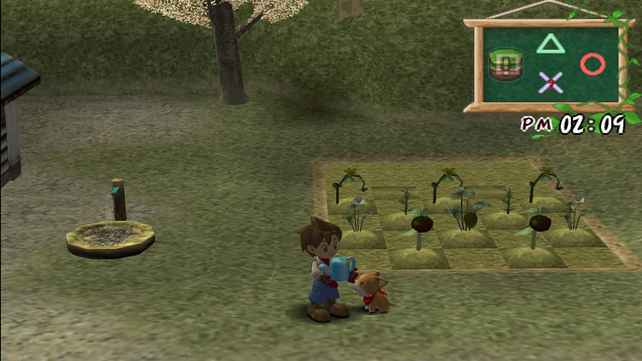 a review of the game harvest moon a wonderful life Get a video game cheat for harvest moon: its a wonderful life for the nintendo gamecube video game console and get infinite money.