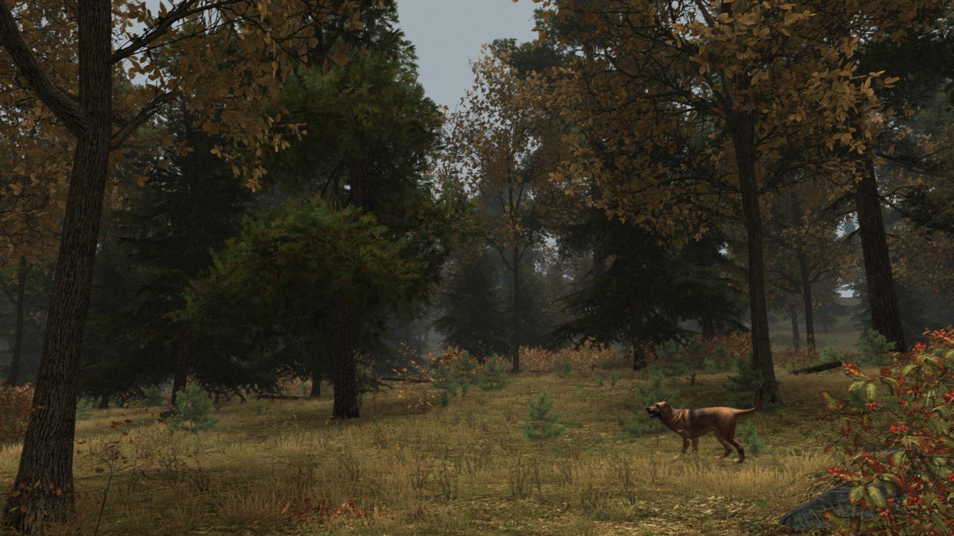 Скриншот №8 к Уолден игра
