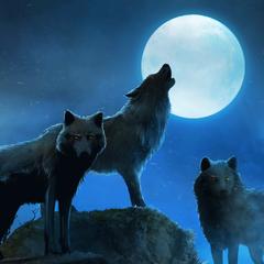 Total Jigsaw - Wolfpack Avatar