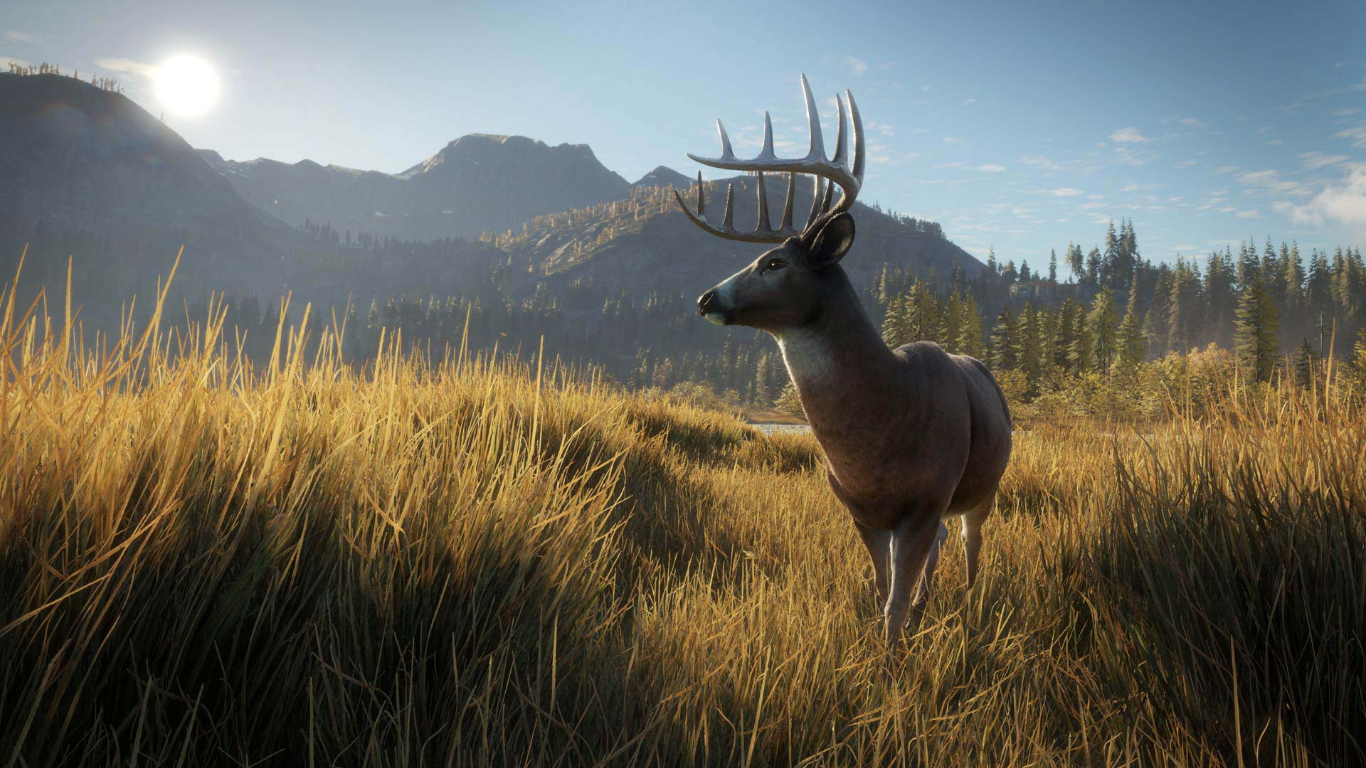 Thehunter call of the wild on ps4 official playstation for Ps4 hunting and fishing games